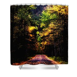 Glacier Fall Road Shower Curtain