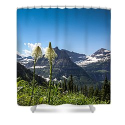 Glacier Grass Shower Curtain