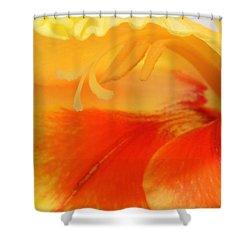 Gladiola Hello Shower Curtain by Deborah  Crew-Johnson