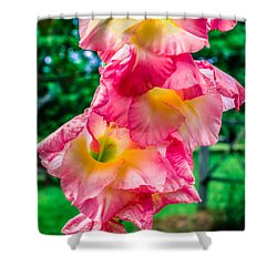 Shower Curtain featuring the photograph Gladiolus by Rob Sellers