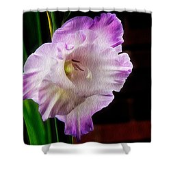 Gladiolus - Summer Beauty Shower Curtain