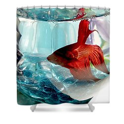 Glamor Rudy Shower Curtain by Valerie Reeves