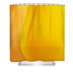 Glass Abstract 733 Shower Curtain by Sarah Loft
