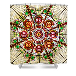 Glass Dome Shower Curtain