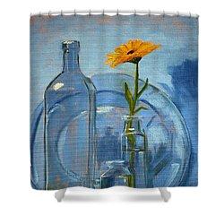 Glass Shower Curtain by Nancy Merkle