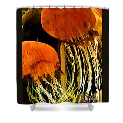 Shower Curtain featuring the photograph Glass No1 by PJ Boylan