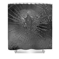 Glass Spider Shower Curtain by Carol Lynch