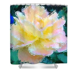 Glazed Pale Pink And Yellow Rose  Shower Curtain