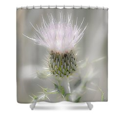 Glimmering Thistle Shower Curtain