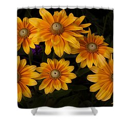 Gloriosa Shower Curtain by Morris  McClung