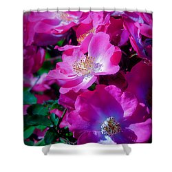 Glorious Blooms Shower Curtain