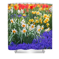 Glorious Spring Shower Curtain