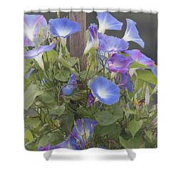 Glory In The Morning Shower Curtain by Kim Hojnacki