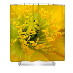 Shower Curtain featuring the photograph Glory Of Nature by Deb Halloran