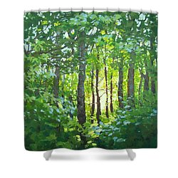 Glow Shower Curtain