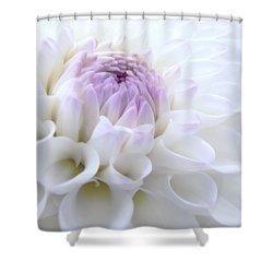 Glowing Dahlia Flower Shower Curtain by Jennie Marie Schell