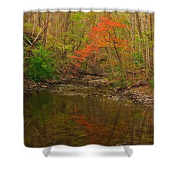 Glowing Fall Shower Curtain