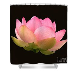 Glowing Lotus Square Frame Shower Curtain