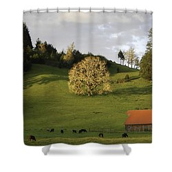 Glowing Tree Moss Shower Curtain