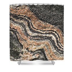 Gneiss Rock  Shower Curtain by Les Palenik