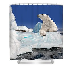 Go With The Floe Shower Curtain