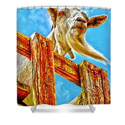Shower Curtain featuring the photograph Goat Up High by Annie Zeno