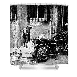 Goatercycle Black And White Shower Curtain