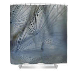 Goat's Beard Seed Macro Shower Curtain by Sandra Foster