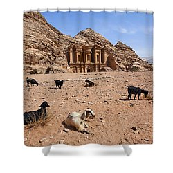 Goats In Front Of The Monastery At Petra In Jordan Shower Curtain by Robert Preston