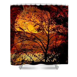Goddess At Sunset Shower Curtain