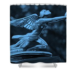 Shower Curtain featuring the photograph Goddess Hood Ornament  by Patrice Zinck