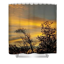 Shower Curtain featuring the photograph Gods Early Morning Palettes by John Glass