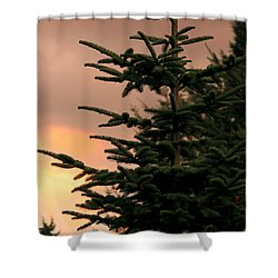 God's Gift Shower Curtain by Jeanette C Landstrom
