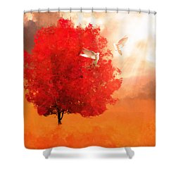 God's Love Shower Curtain by Lourry Legarde
