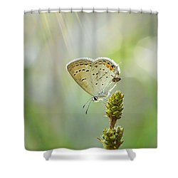 God's Love Shining Down Shower Curtain by Debbie Green