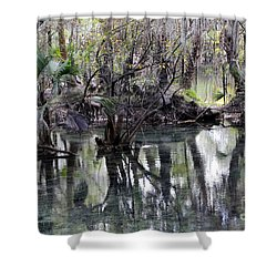 Going Back In Time Shower Curtain by Carol Groenen
