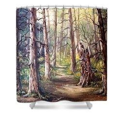Shower Curtain featuring the painting Going For A Walk by Megan Walsh