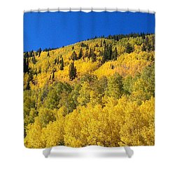 Shower Curtain featuring the photograph Going Gold by Fortunate Findings Shirley Dickerson