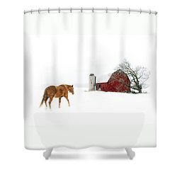 Going Home Shower Curtain by Ann Lauwers