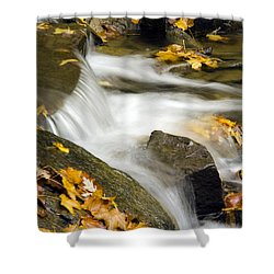 Going With The Flow Shower Curtain by Christina Rollo