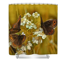 Gold And Brown Shower Curtain