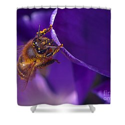 Gold Dust Shower Curtain by Sharon Talson
