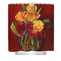 Gold N Red Iris Shower Curtain