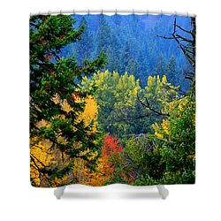 Gold Zen Shower Curtain