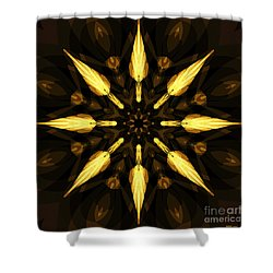 Golden Arrows Shower Curtain by Elizabeth McTaggart
