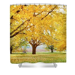 Golden Autumn Shower Curtain