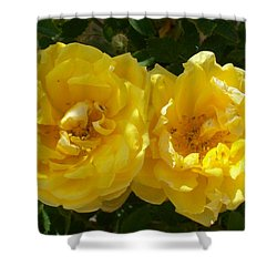 Golden Beauty Shower Curtain