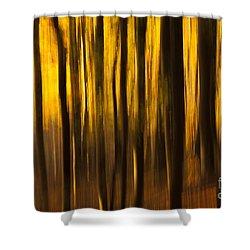 Golden Blur Shower Curtain by Anne Gilbert