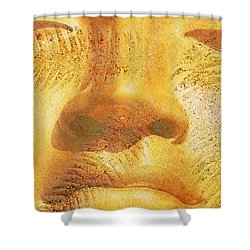 Golden Buddha - Art By Sharon Cummings Shower Curtain by Sharon Cummings