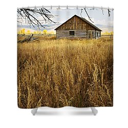 Golden Cabin Shower Curtain by Sonya Lang